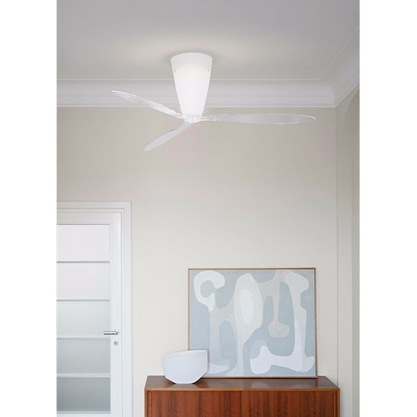 Blow transparent soffitto